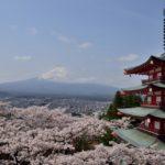 新倉山浅間公園・忠霊塔、富士山と桜の写真