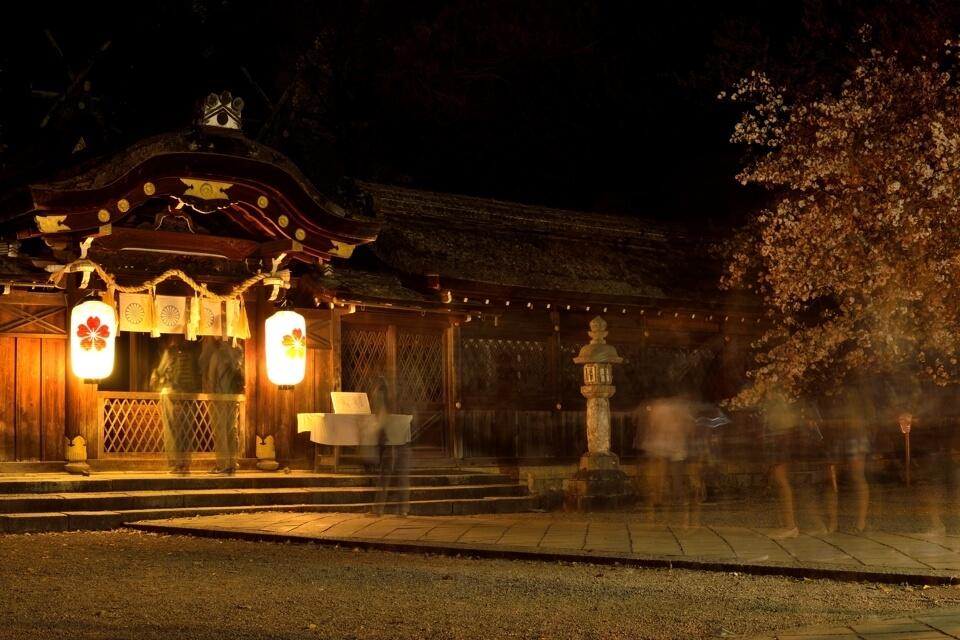 平野神社の夜桜写真