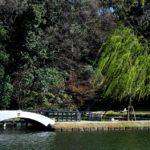 徳川園の写真