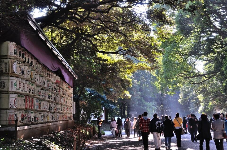 明治神宮の写真