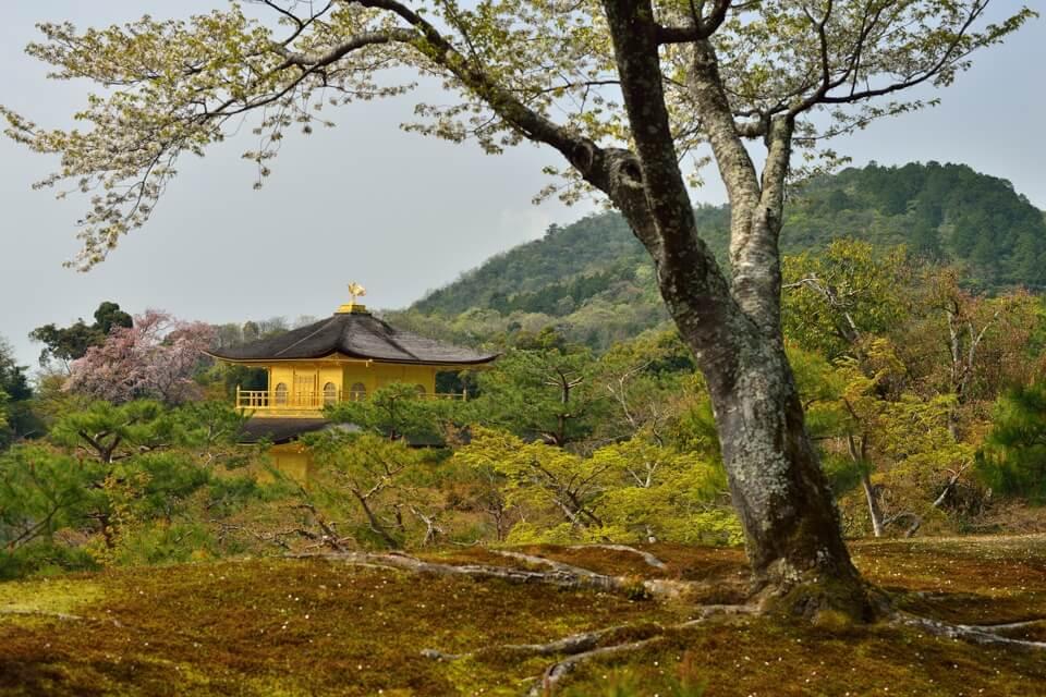 金閣寺の写真、一眼レフカメラ撮影スポット