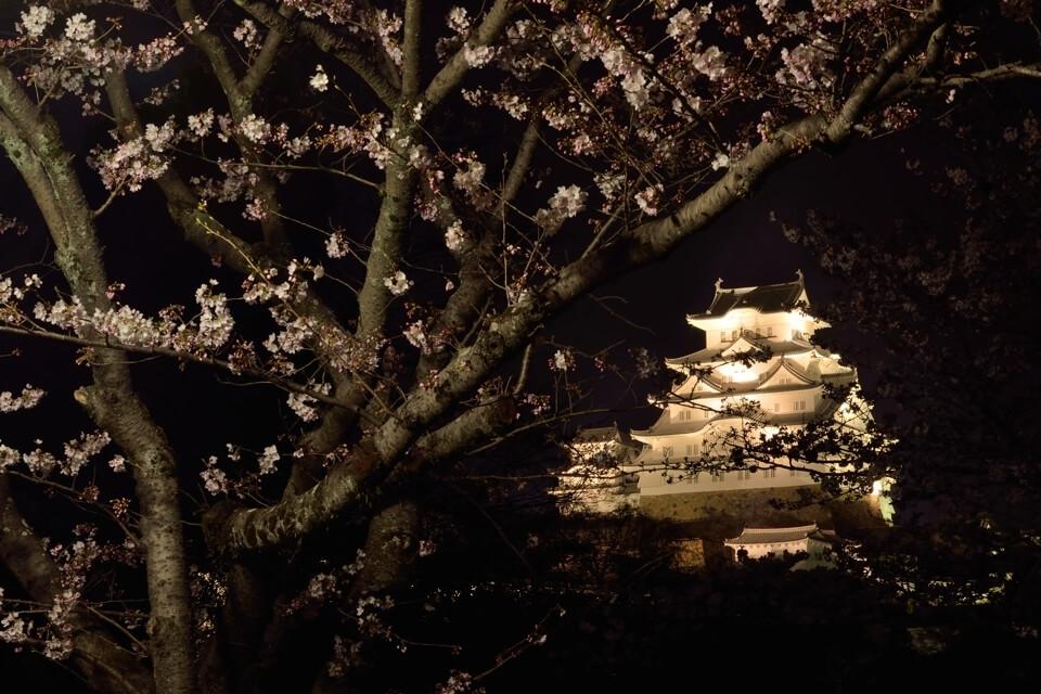 姫路城の写真