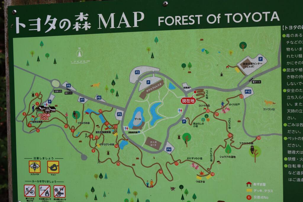 フォレスタヒルズ・トヨタの森ランニング写真