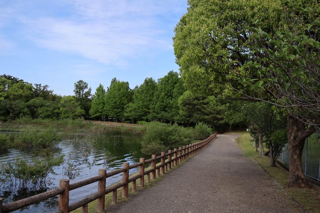 洲原池公園ジョギング写真