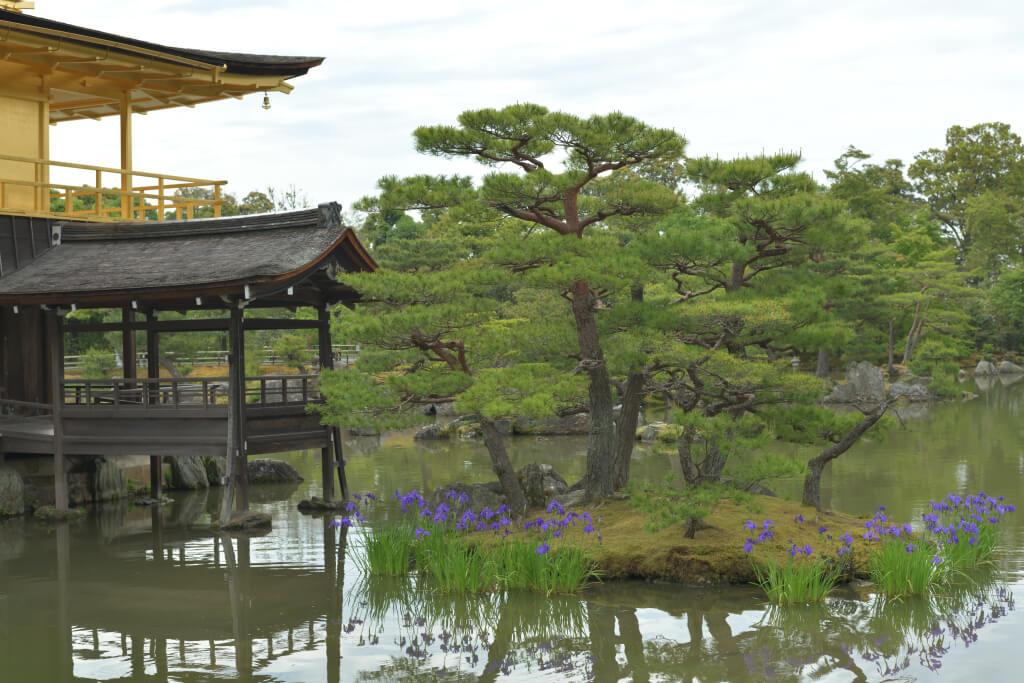 金閣寺の写真