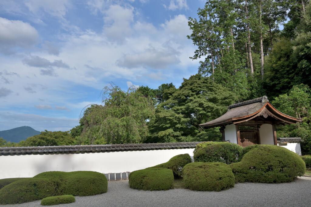 正伝寺の写真とデヴィットボウイ
