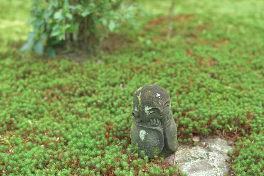 圓光寺の写真