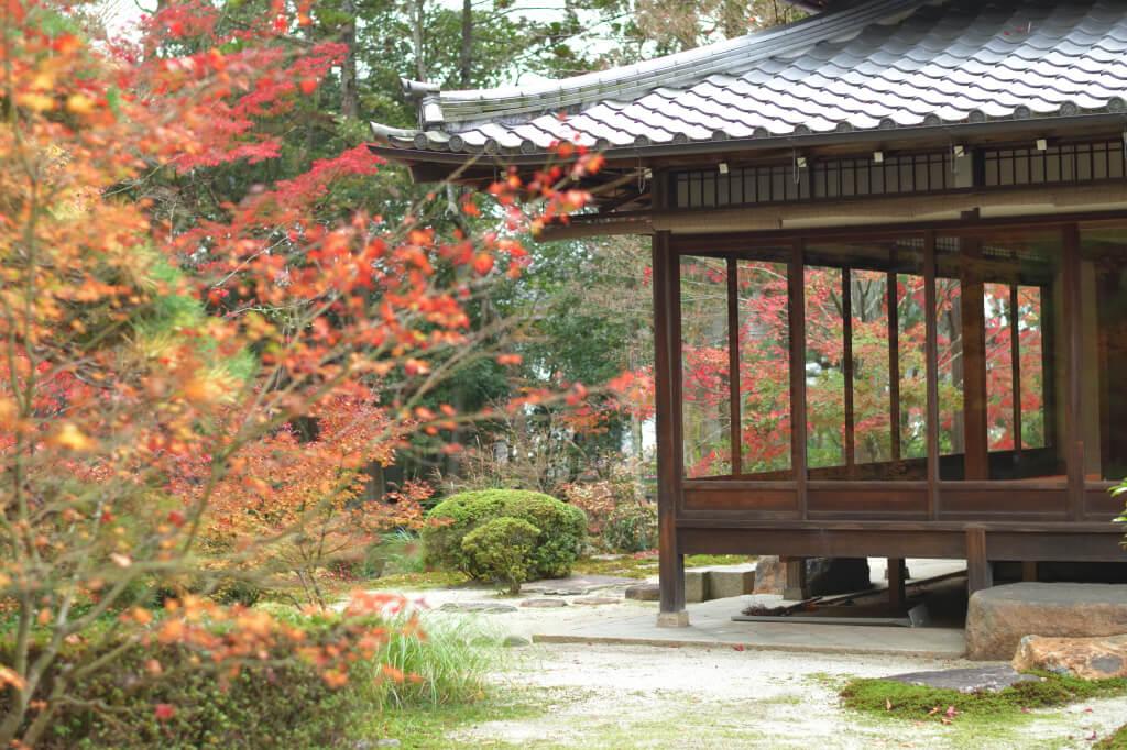 南禅寺天授庵の紅葉写真