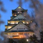 大阪城の夜桜写真