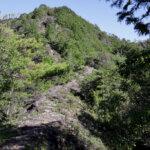 宇連山トレイルランニング写真